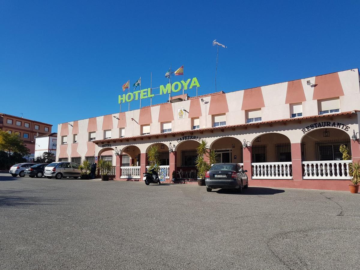 Camino de Santiago Accommodation: Hotel Moya ⭑