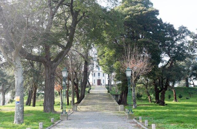Photo of Crasto on the Camino de Santiago