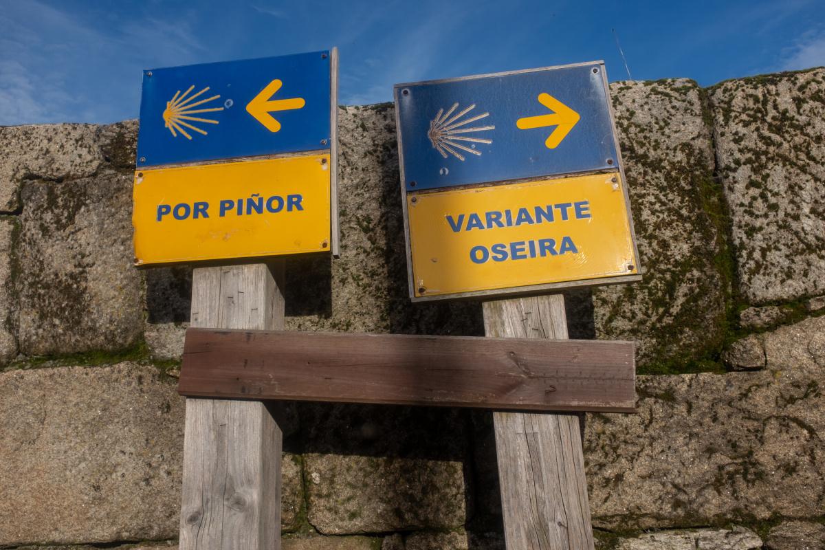 Photo of Piñor Route v. Variante Oseira on the Camino de Santiago