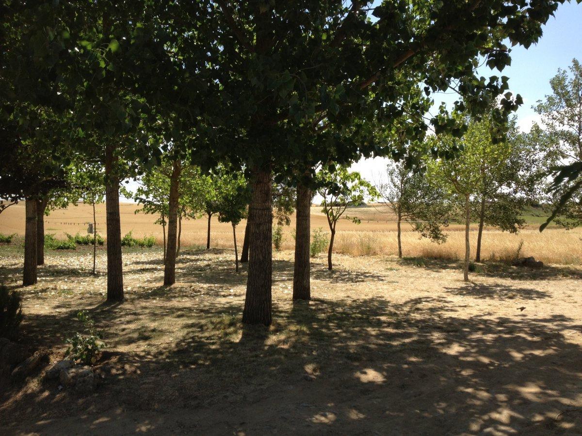 Camino de Santiago Accommodation: Albergue de San Nicolas
