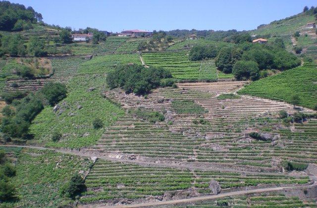 Photo of Belasar on the Camino de Santiago