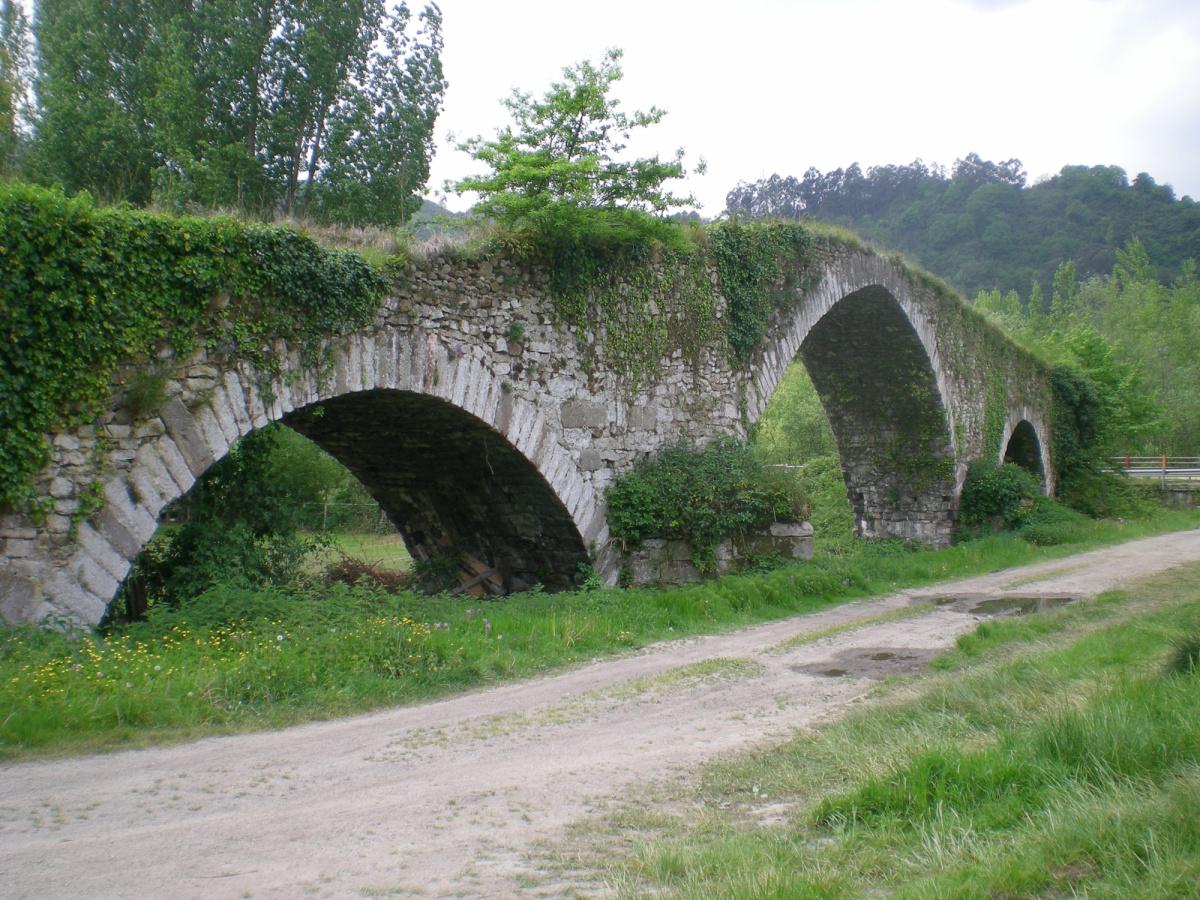 Photo of Olloniego on the Camino de Santiago