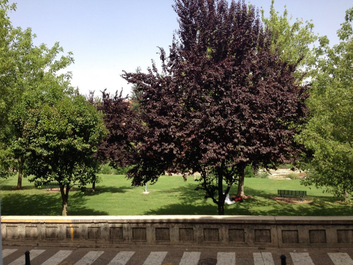 Camino de Santiago Accommodation: Albergue Puerta de Nájera