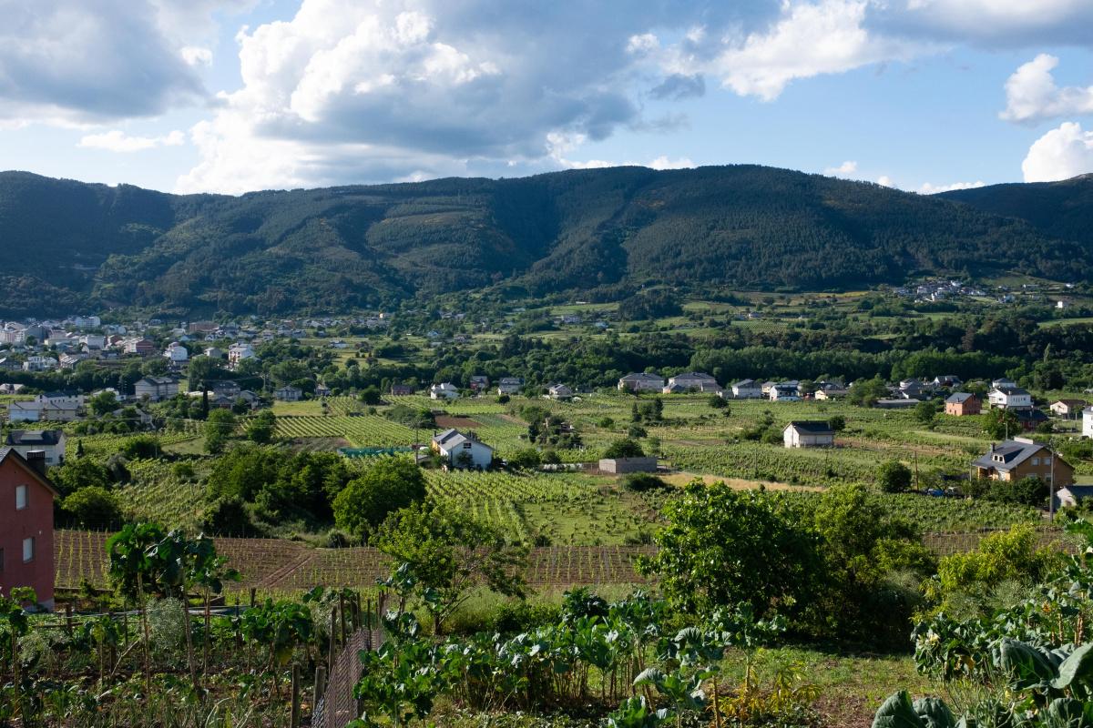 Photo of Caspedro on the Camino de Santiago