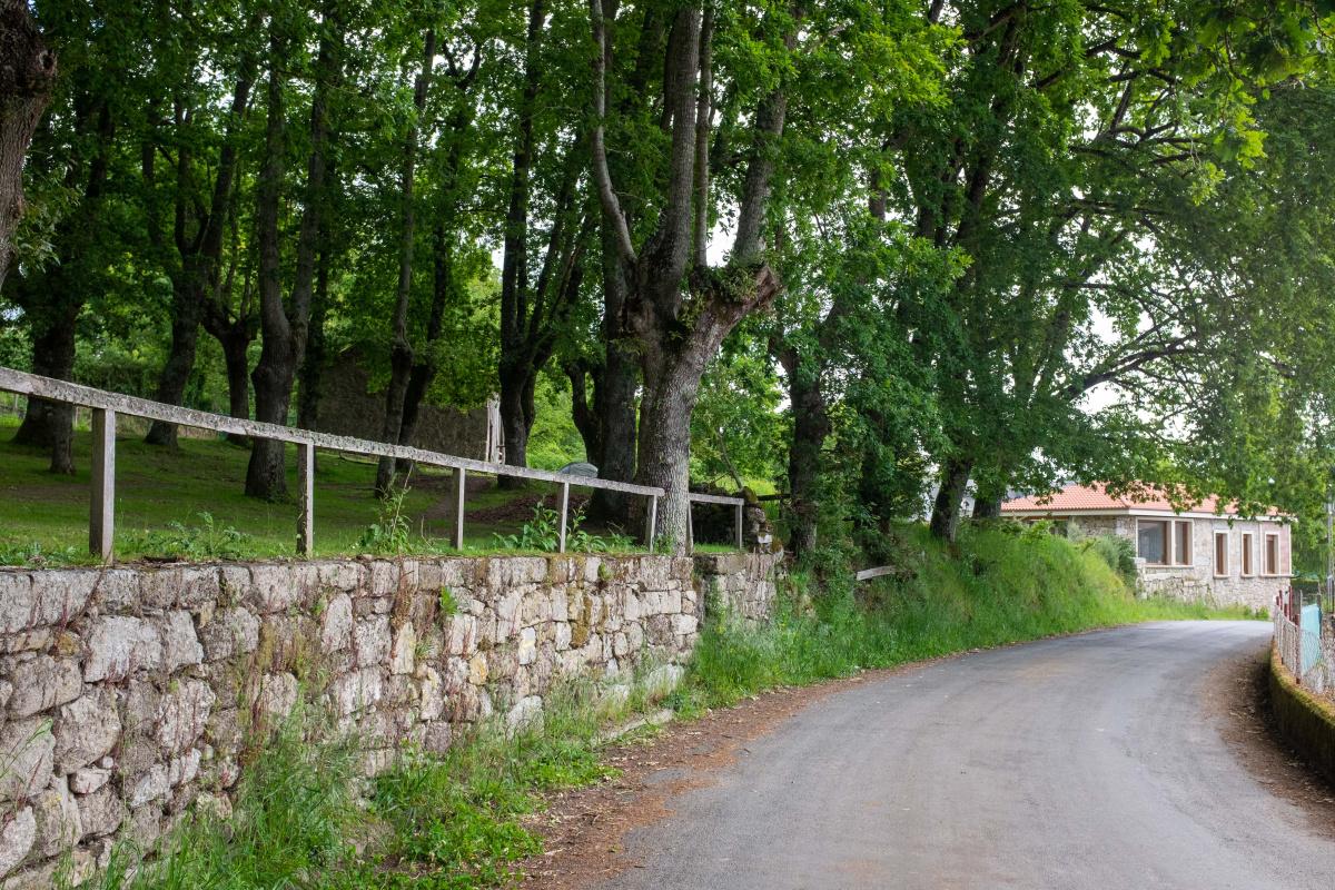 Photo of Centulle on the Camino de Santiago
