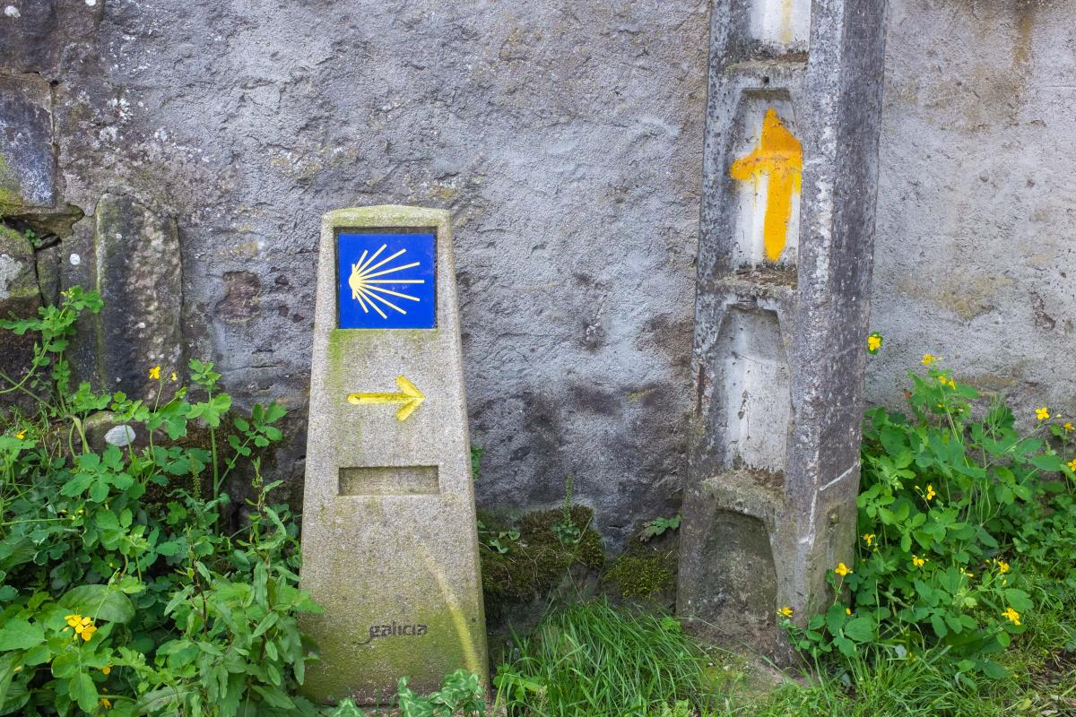 Photo of Palmaz on the Camino de Santiago