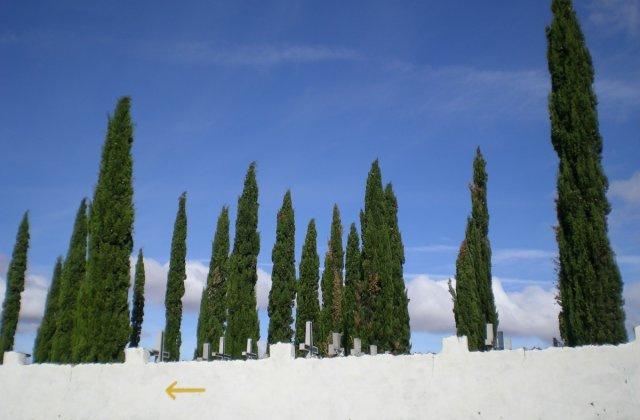 Photo of Valdelafuente on the Camino de Santiago